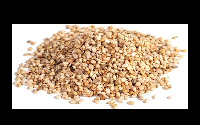 Sesame